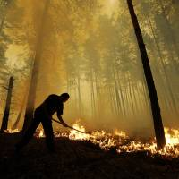 Russian wildfires put key climate change resource at risk
