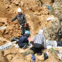 Ishigaki Island may harbor biggest Paleolithic ruins in East Asia