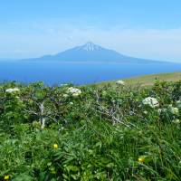 71 of Japan's remote islands to get government revitalization advisers