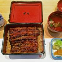 Unagi Fujita: The lowly eel comes up in the world