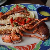 Red Lobster: Aichi Prefecture puts imported crustaceans in hot water
