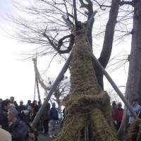 A huge rice-rope vagina is readied for penetration by a rope phallus at a fertility festival in Nara Prefecture. | JOHN DOUGILL / GREEN SHINTO