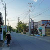 A quiet stretch on the Matsumae Highway in Aomori, the same road that Alan Booth walked in 1988. | MOMOKO KATO