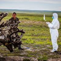 Scientists warn anthrax one among multiple threats loosed by melting Russian permafrost
