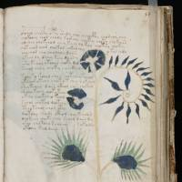 The world's most mysterious book: Spanish publisher to clone the Voynich Manuscript