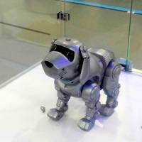 China's robotics industry provides lesson in out-of-control debt