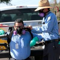 A man gets help putting on his spraying apparatus as San Diego County officials hand-spray a two-block area to help prevent the mosquito-borne transmission of the Zika virus in the city on Friday. | REUTERS