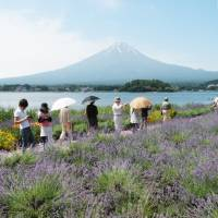 Muslim hotel opens at Mount Fuji beauty spot, but so far no bookings