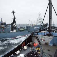 U.S. Sea Shepherd settles case but Australian branch defiant