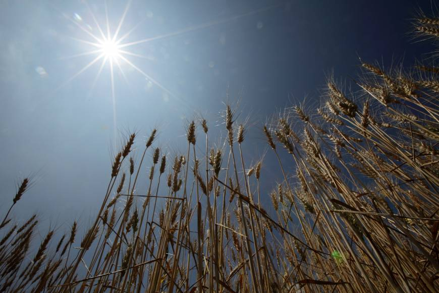 Climate change threatens nation's agriculture