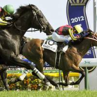 Deep Brillante (background) wins the Japanese Derby at Tokyo Racecourse in May 2012. The thoroughbred was squired at Paca Paca Farm in Hidaka, Hokkaido.   KYODO