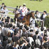Tokyo Racecourse is one of the planet's largest stadiums.   KYODO