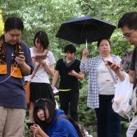 Augmented frivolity: Pokemon hunters are glued to their mobile phones as they play 'Pokemon Go' in Shinjuku Gyoen National Garden in Tokyo. | AP