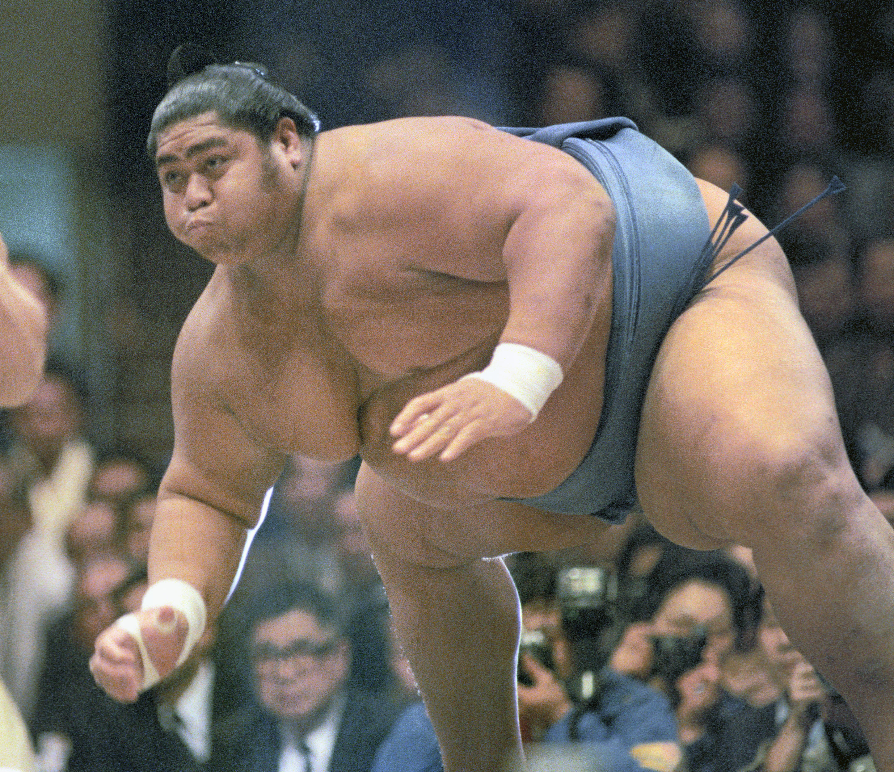 Image result for sumo wrestler images