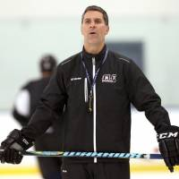 Avs hire minor league vet Bednar to replace Roy as coach