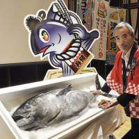 Japanese firm succeeds in bluefin tuna farming with formulated feed