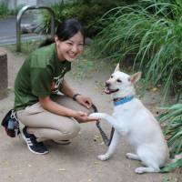 Dog training instructor Sae Hokoyama shakes a dog's paw at a park in Tokyo on Aug. 10. | KYODO