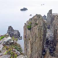 The steep Tojinbo cliffs in Sakai, Fukui Prefecture, are one of Japan's most notorious suicide spots, but recently the area has become popular with 'Pokemon Go' players. | ISTOCK
