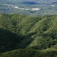 The evergreen forest region of Yanbaru in northern Okinawa was designated a national park on Thursday. | KYODO