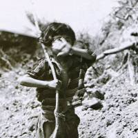 Tiny survivor: Tomiko Higa holds a white flag and covers her face, in a photo taken on June 25, 1945. | WIKIMEDIA COMMONS