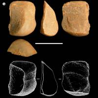 Brazilian monkeys make rock flakes similar to early stone tools attributed to humans