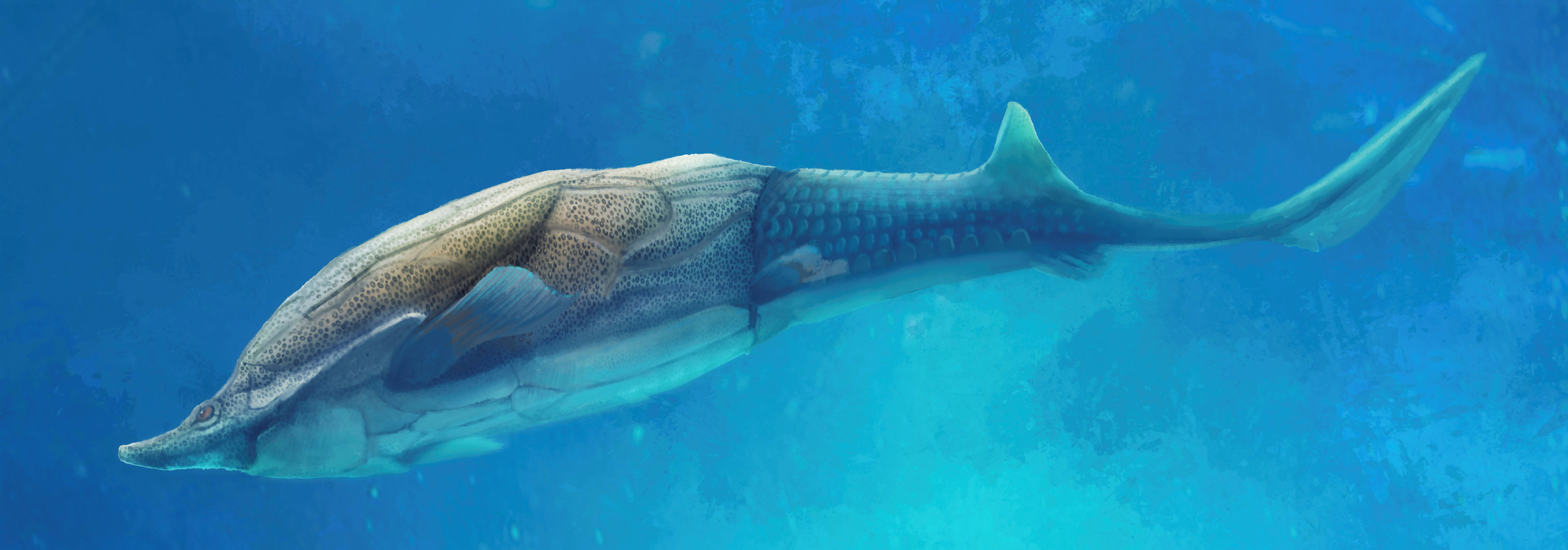 This illustration shows the fish called Qilinyu, which lived 423 million years ago during the Silurian Period. | REUTERS