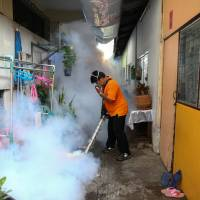 WHO warns Zika is likely to spread further in Asia-Pacific region