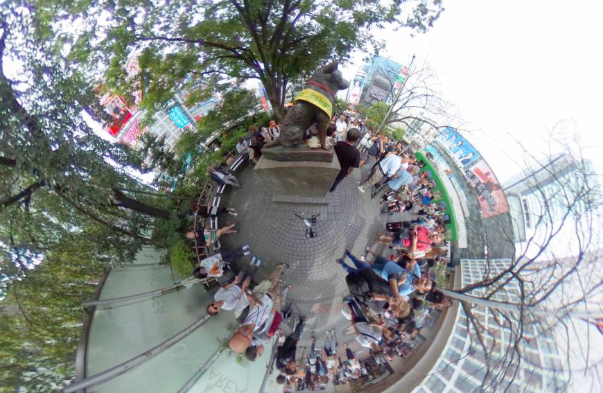 The bronze statue of the dog Hachiko in front of Shibuya Station in Tokyo pops out from the crowd in this Sept. 25 image.