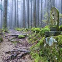 Part of the Kumano Kodo. UNESCO originally designated the majority of these routes as World Heritage sites in 2004. | ISTOCK