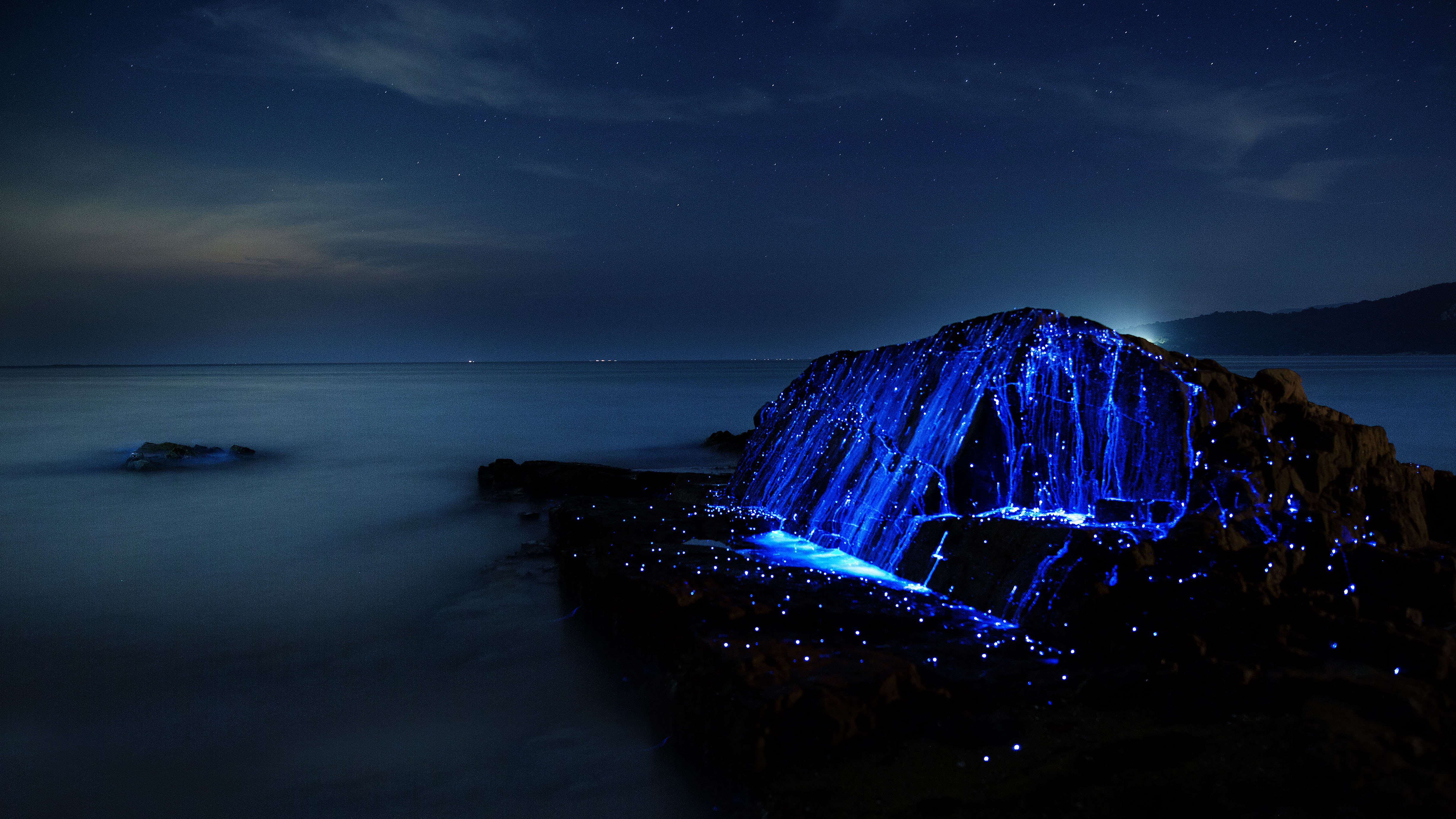 Shrimp galaxy: Sea fireflies glow after being placed on a rock in Okayama Prefecture. | PHOTOS BY TREVOR WILLIAMS, TIM CLEMINSON, JONATHAN GALIONE