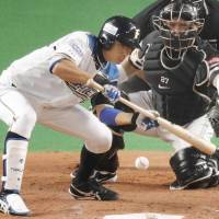 Nippon Ham's Takuya Nakashima bunts during the fourth inning of the FIghters' win over the Hawks on Sunday.   KYODO