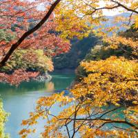 Blazing trails: The leaves are changing color and it's the perfect time to get out to places such as Lake Okutama.   BEN BEECH