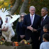 Obama officially pardons last Thanksgiving turkey, all puns intended