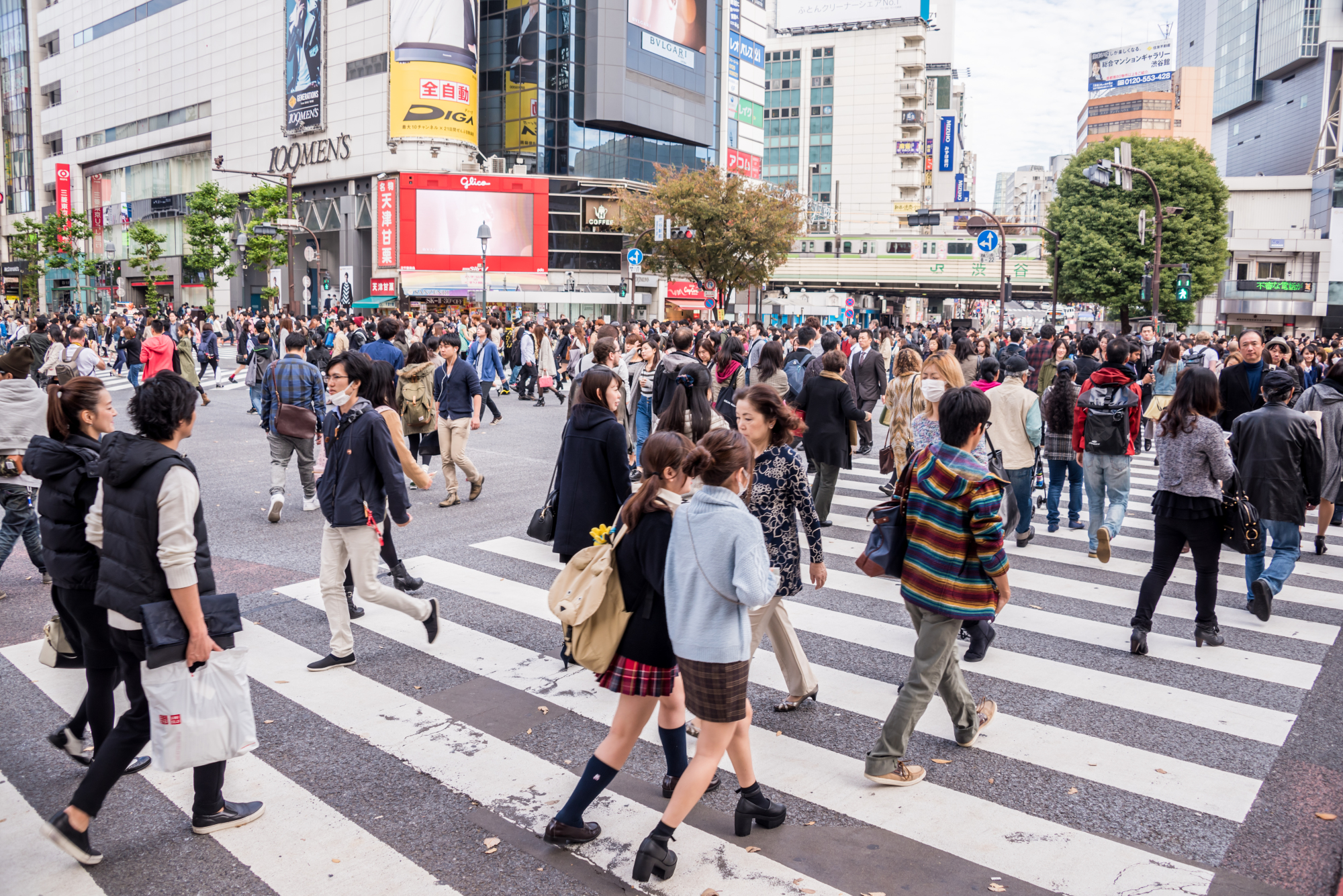 Young Japanese today prefer security and show little of the 'animal spirit' needed to help realize Prime Minister Shinzo Abe's vision of a 'great entrepreneurial nation,' experts say. | ISTOCK
