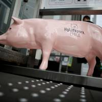 A pig statue graces the entrance of HyLife Pork Table, a pork dish restaurant operated by Canadian pig farmer and pork processor HyLife in Tokyo's Daikanyama district on Oct. 31. | REUTERS