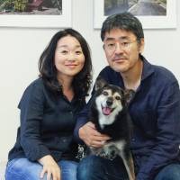 Star light, star bright: Dog called Goma finds a home in Tokyo