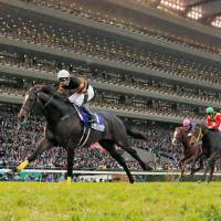 Kitasan Black (far left) comes home to win the Japan Cup at Tokyo Racecourse on Sunday. | KYODO