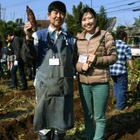 Yukiko Iwatate helps out at a farming-cum-matchmaking event hosted by an group run by Takayoshi Enomoto (left) in Matsudo, Chiba Pref., on Nov. 6. | KYODO