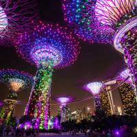 Solar-powered 'Supertrees' at Gardens by the Bay are illuminated in front of the Marina Bay Sands hotel and casino in Singapore in March 2015. | BLOOMBERG