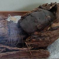 Secrets of world's oldest mummies are revealed by DNA tests, scans