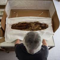 Chilean anthropologist Veronica Silva shows one of the mummies from the ancient Chinchorro culture at the National Museum of Natural History in Santiago on Dec. 16. | AFP-JIJI