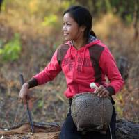 A girl enters a forest in Savannakhet province in Laos to find food for breakfast in April 2015. | JAPAN INTERNATIONAL VOLUNTEER CENTER