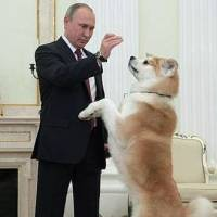 Video of Putin and Yume revives Akita boom in Russia