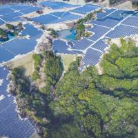 A photovoltaic power station sits in the middle of a forest in Kamogawa, Chiba Prefecture, in October 2015. | COURTESY OF KOICHIRO OTAKI