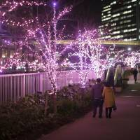Holiday lights burn bright along Meguro River thanks to biodiesel fuel initiative