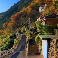 Depopulated Okutama offers vacant homes, perks as incentives to attract families