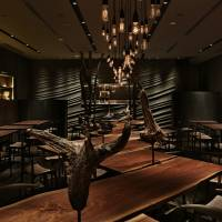 Earthy interior: Argile's dining room is dark, atmospheric and fitted out with natural materials, including suspended pieces of worn tree trunks. | ESQUISSE