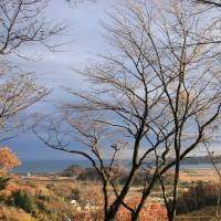 The view from the deck at the front of the school overlooking the Higashi-Matsushima suburb of Nobiru that was devastated by the tsunami. | COURTESY OF C.W. NICOL AFAN WOODLAND TRUST
