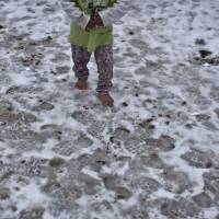 A Syrian refugee child walks barefoot on frozen ground at the refugee camp of Ritsona about 86 km (53 miles) north of Athens, Wednesday. The European Commission said conditions for refugees on islands and other camps where they are housed in tents despite severe cold weather, is 'untenable.' | AP