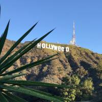 Prankster briefly turns Hollywood sign into 'HOLLYWeeD'